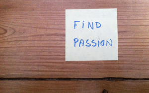finde sin passion